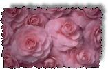 Get our Easy Rose Gardening Ebook by Robert Mosse.